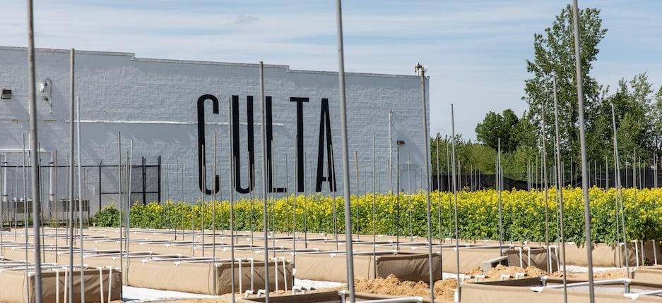 culta warehouse in cambridge maryland