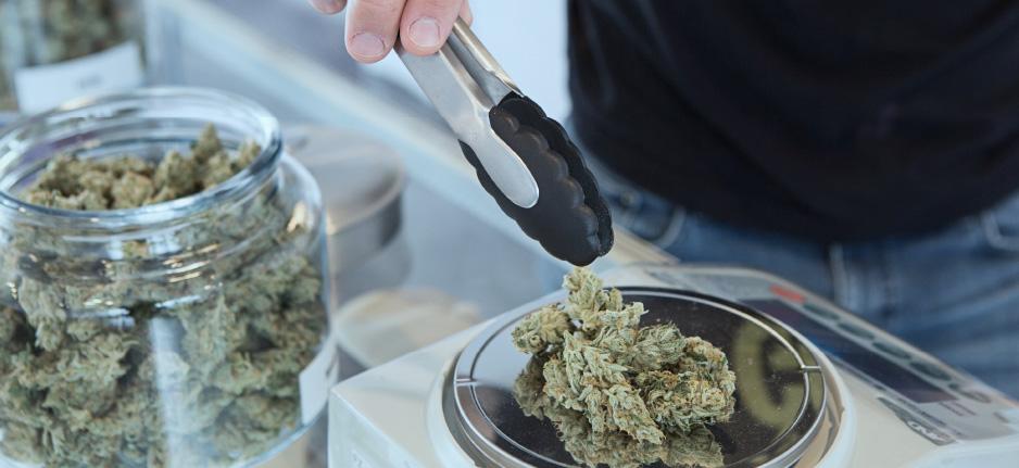 cannabis retailer
