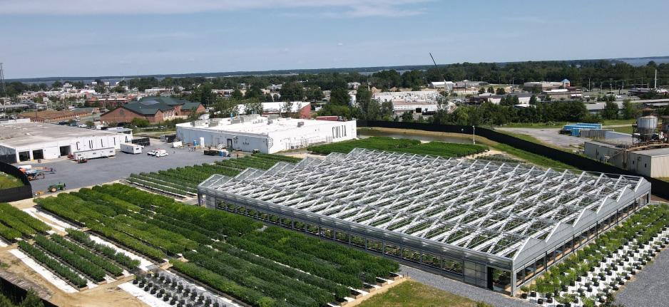 outdoor grow facility